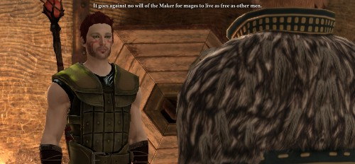 Zel talking to Anders, whose feathered back is to us. Two snark mages together? Mmmm.